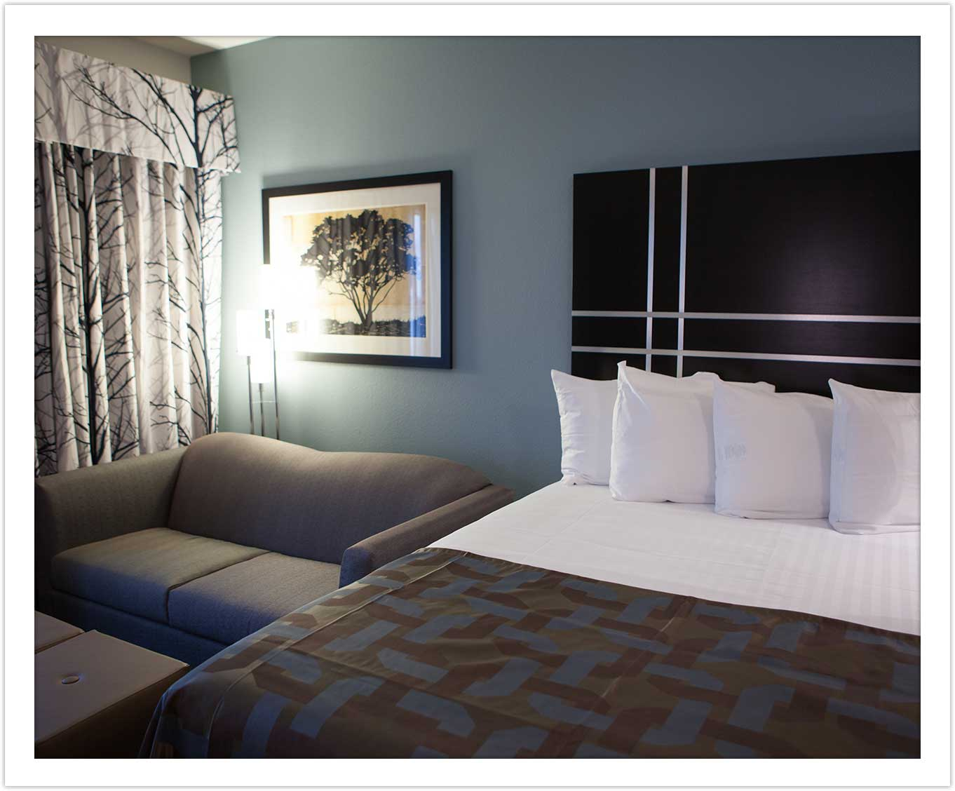 Modern Bedding at the Arbor Hotel and Conference Center Lubbock Texas